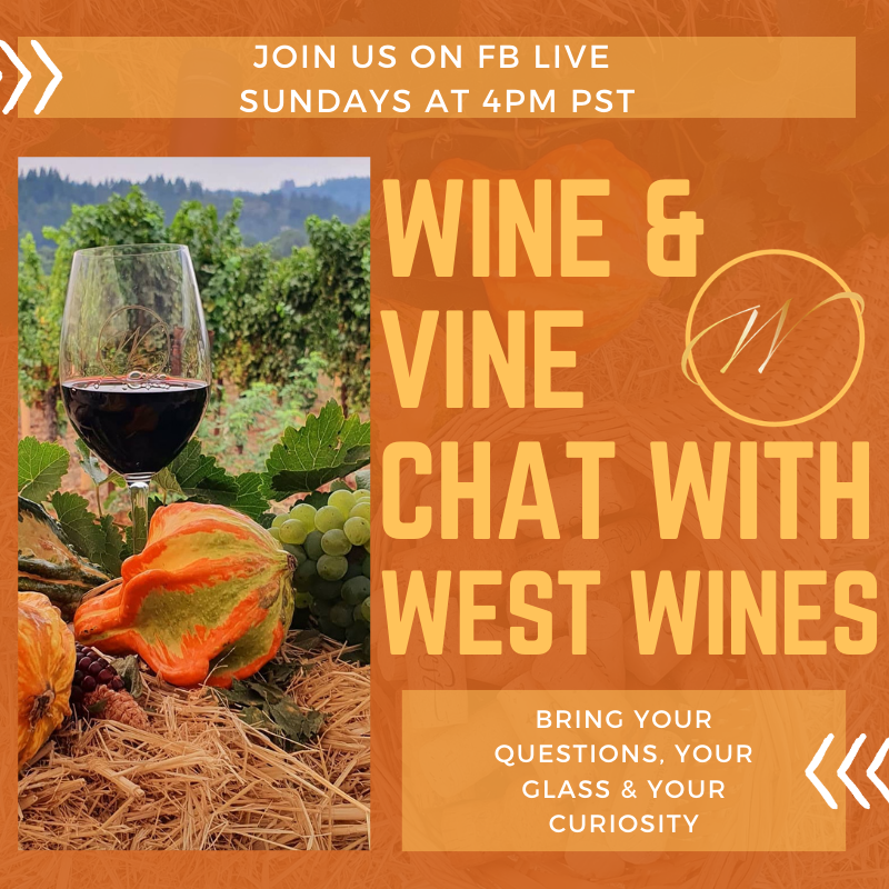 Wine & Vine Chat with Winemaker Katarina